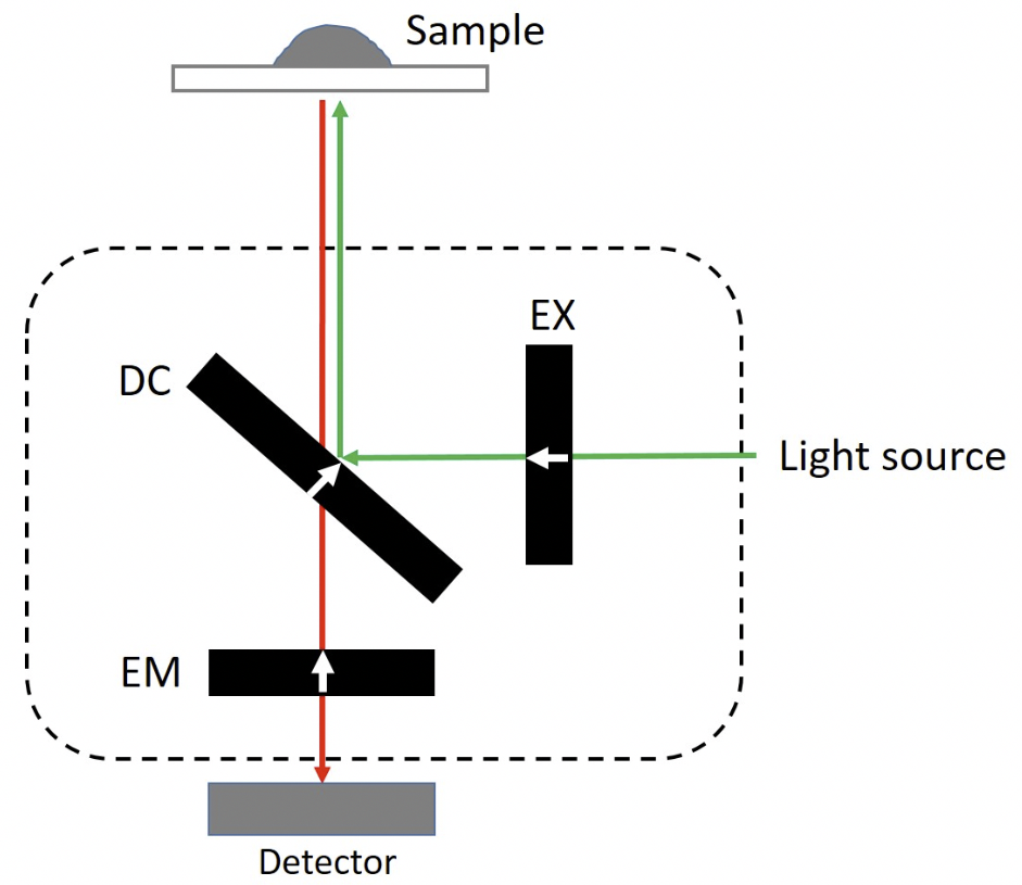 Filter orientation